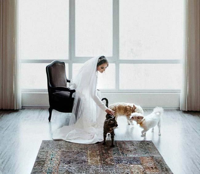 تصاویر مراسم ازدواج میترا ابراهیمی همسر پیمان قاسم خانی + بیوگرافی و حواشی